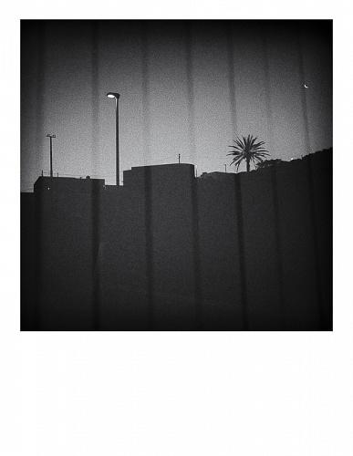 Summer nights, walking