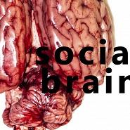#SOCIALBRAIN