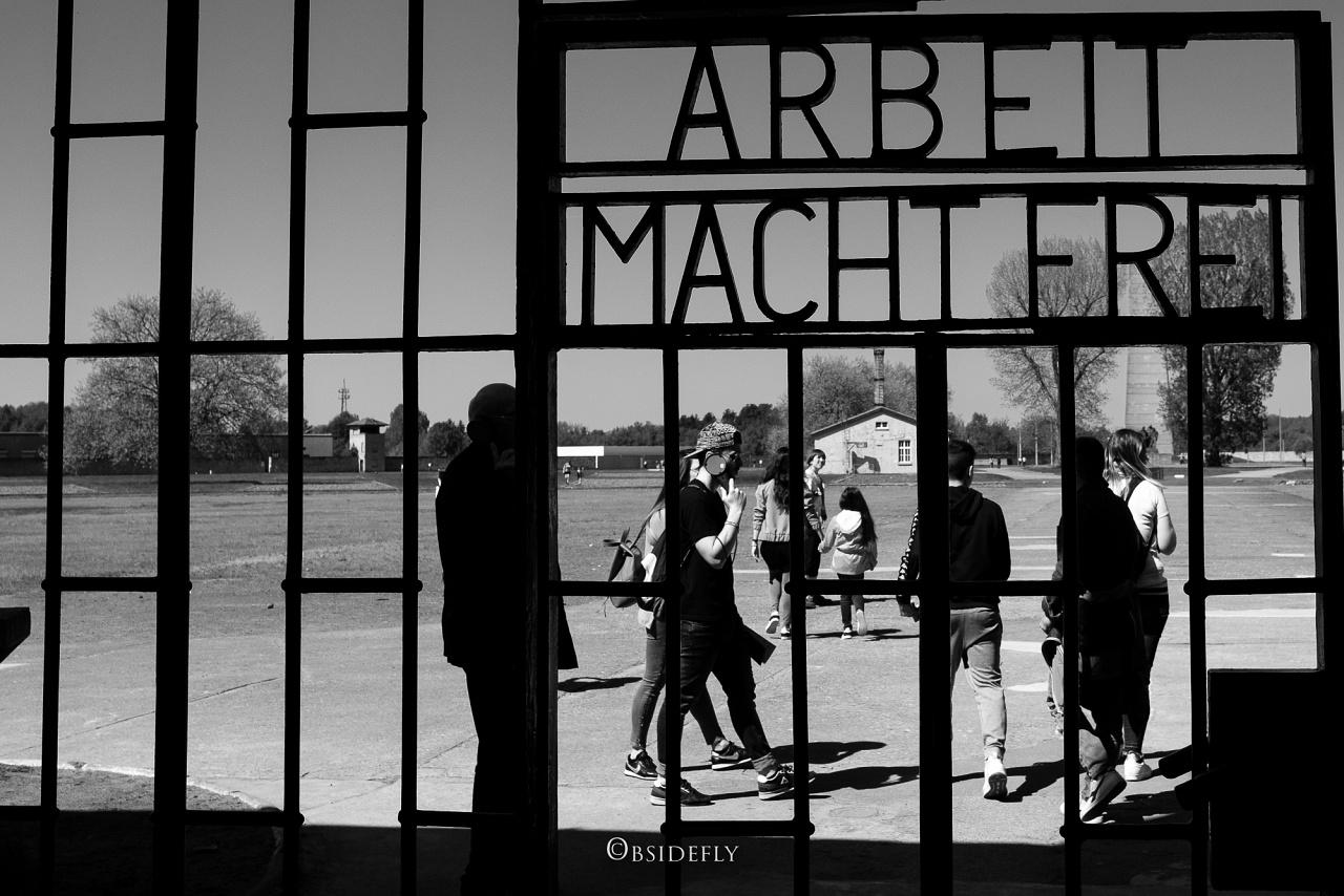 Berlino, memorie e ferite